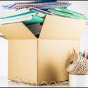 Commercial Moving in Massachusetts: How to Relocate an Office