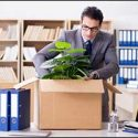 What to Expect When You Hire Professional Movers in Yarmouth